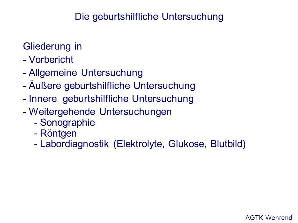 Die geburtshilfliche Untersuchung Gliederung in - Vorbericht - Allgemeine Untersuchung - Äußere geburtshilfliche Untersuchung - Innere geburtshilflich