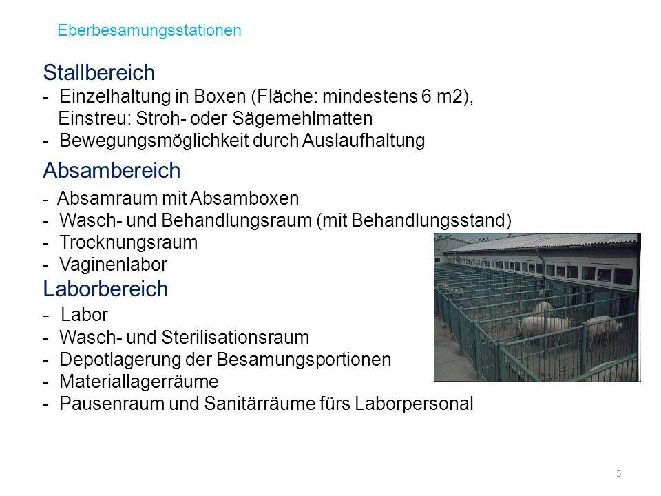 Zuchtwertschätzung beim Eber Top-Genetik-Programme: Selektion von KB-Ebern mit überdurchschnittlichen Zuchtwerten (seit 1990) 6 Busch/Waberski, 2007