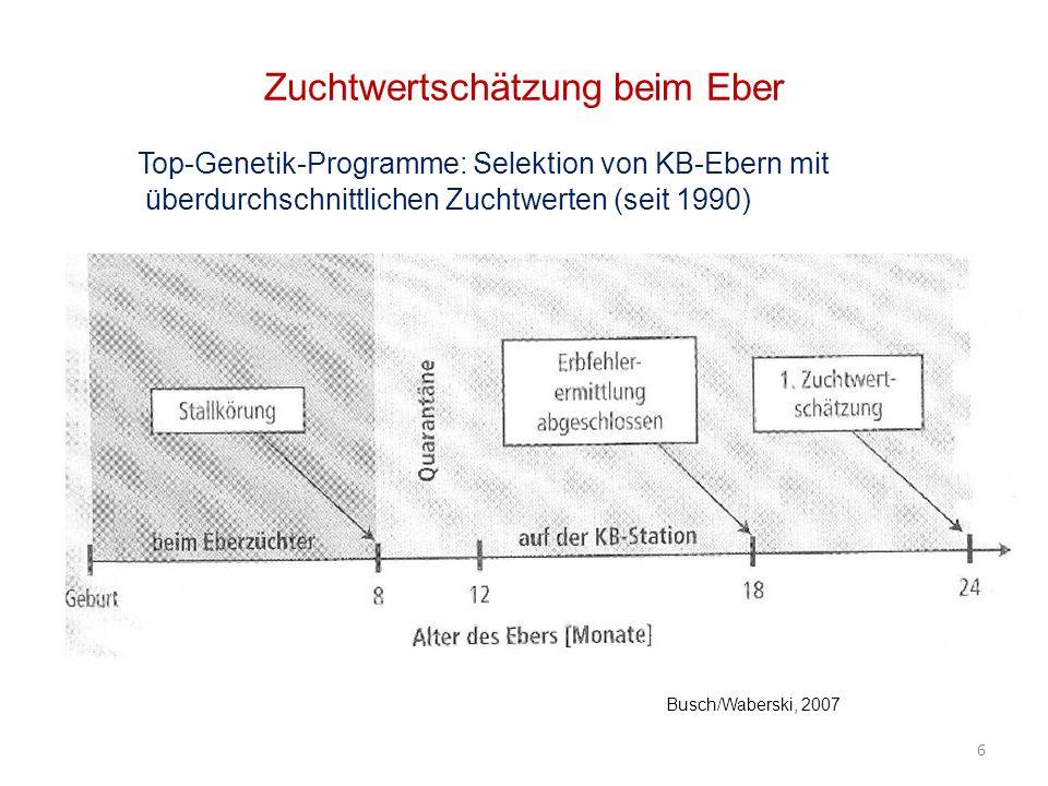 Spermaaufbereitung und -konservierung Flüssigkonservierung (Standardverfahren) Tiefgefrierkonservierung Verfahren: 27