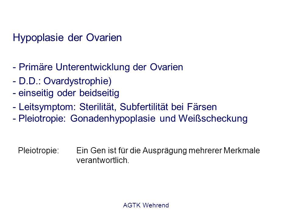 AGTK Wehrend Hypoplasie der Ovarien - Primäre Unterentwicklung der Ovarien - D.D.: Ovardystrophie) - einseitig oder beidseitig - Leitsymptom: Sterilit