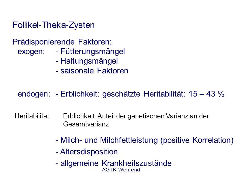 AGTK Wehrend Follikel-Theka-Zysten Symptome:vielgestaltig (abhängig von der endokrinen Potenz) -Nymphomanie - Ödematisierung der Vulva - Einfallen der Beckenbänder - Hydro- und Mukometra - Milchrückgang - Zyklusblockade - symptomlos Verlauf:- Persistenz - spontane Rückbildung