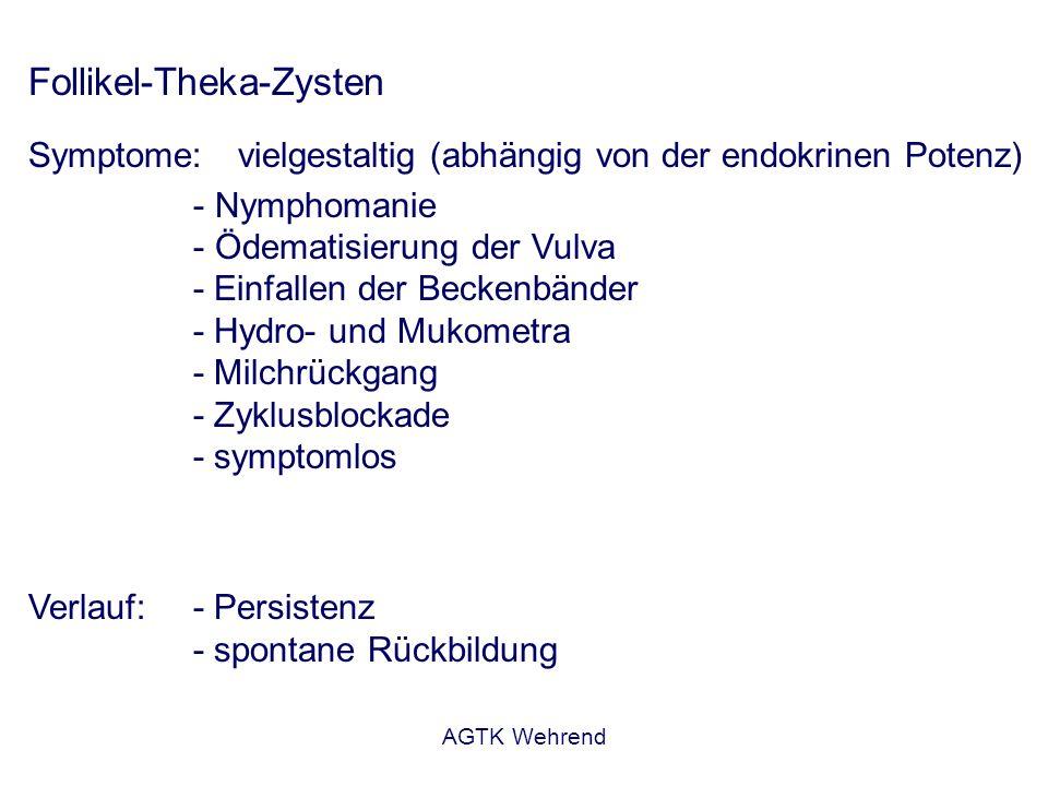 AGTK Wehrend Follikel-Theka-Zysten Diagnose:- wiederholte rektale Untersuchung/US (8 – 14 Tage) - (Follikelgröße > 2,5 cm) - klinische Symptomatik Beurteilung: - Dauer der Erkrankung - schlecht: beidseitig, multiple Zysten - Zeitpunkt des Auftretens Behandlung: - Bestandsproblem oder Einzeltier .