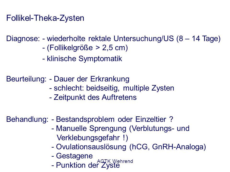 AGTK Wehrend Follikel-Theka-Zysten Diagnose:- wiederholte rektale Untersuchung/US (8 – 14 Tage) - (Follikelgröße > 2,5 cm) - klinische Symptomatik Beu