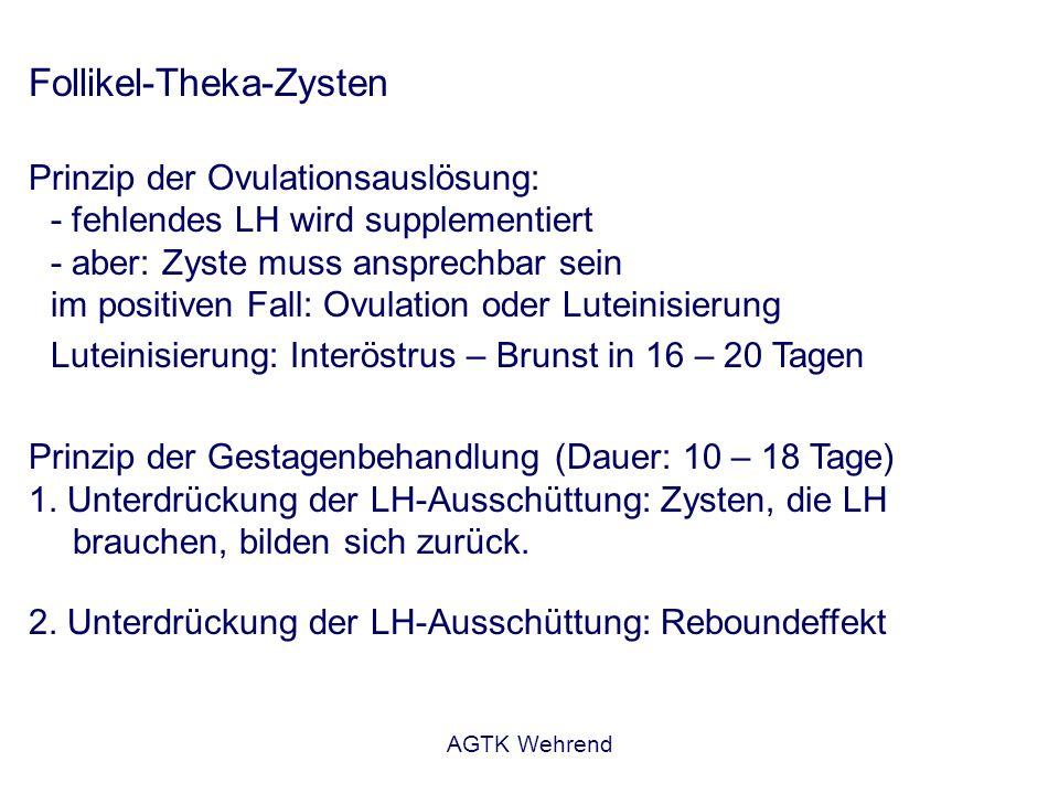 AGTK Wehrend Follikel-Theka-Zysten Prophylaxe: - Prädisponierende Faktoren abstellen - Puerperalkontrolle – rechtzeitige Behandlung gewährleisten Follikel-Lutein-Zysten Bedeutung:- seltener als Follikel-Theka-Zysten Pathogenese: - Luteinisierung eines präovulatorischen Follikels ohne Ovulation - Progesteron-Sekretion - Blockierung des Zyklus