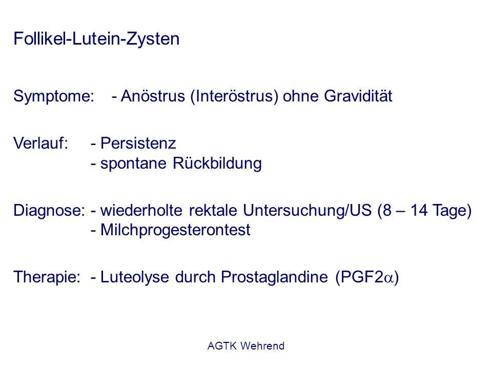 AGTK Wehrend Follikel-Lutein-Zysten Symptome:- Anöstrus (Interöstrus) ohne Gravidität Verlauf:- Persistenz - spontane Rückbildung Diagnose:- wiederhol