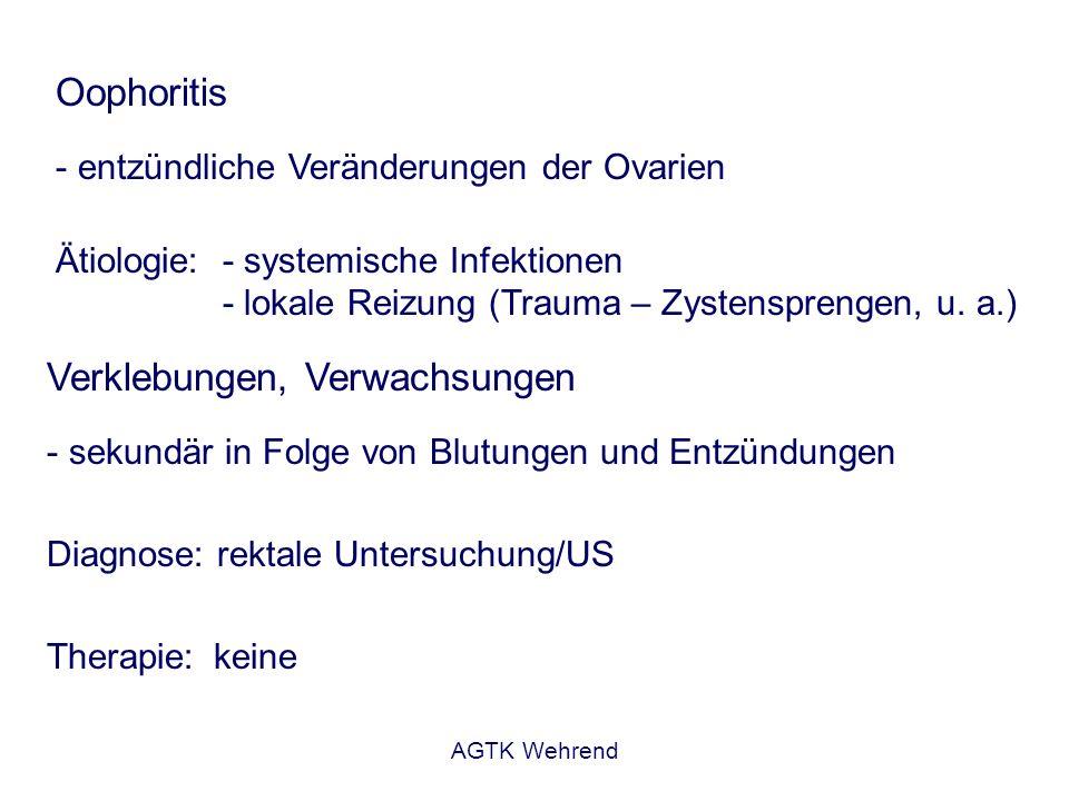 AGTK Wehrend Oophoritis - entzündliche Veränderungen der Ovarien Ätiologie:- systemische Infektionen - lokale Reizung (Trauma – Zystensprengen, u. a.)