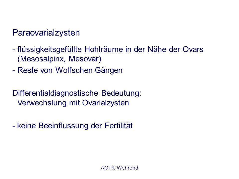 AGTK Wehrend Paraovarialzysten - flüssigkeitsgefüllte Hohlräume in der Nähe der Ovars (Mesosalpinx, Mesovar) - Reste von Wolfschen Gängen Differential