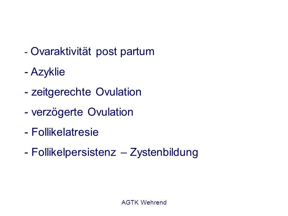 AGTK Wehrend - Ovaraktivität post partum - Azyklie - zeitgerechte Ovulation - verzögerte Ovulation - Follikelatresie - Follikelpersistenz – Zystenbild