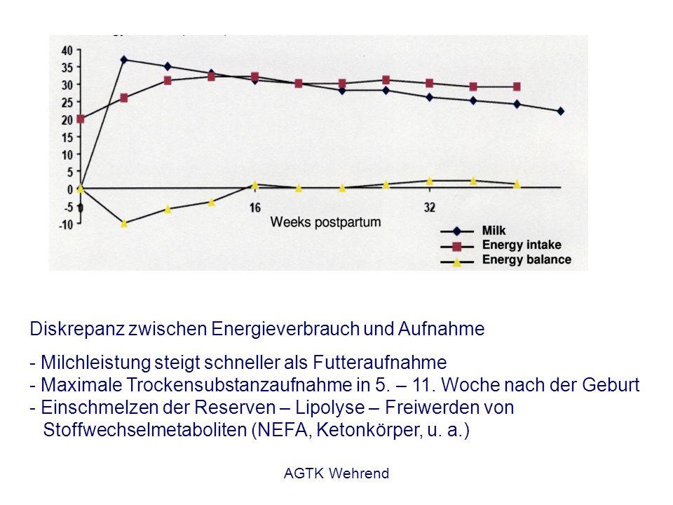AGTK Wehrend Diskrepanz zwischen Energieverbrauch und Aufnahme - Milchleistung steigt schneller als Futteraufnahme - Maximale Trockensubstanzaufnahme