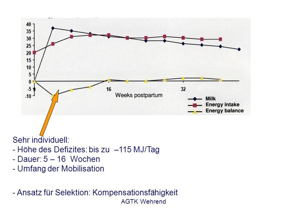 AGTK Wehrend Sehr individuell: - Höhe des Defizites: bis zu –115 MJ/Tag - Dauer: 5 – 16 Wochen - Umfang der Mobilisation - Ansatz für Selektion: Kompe