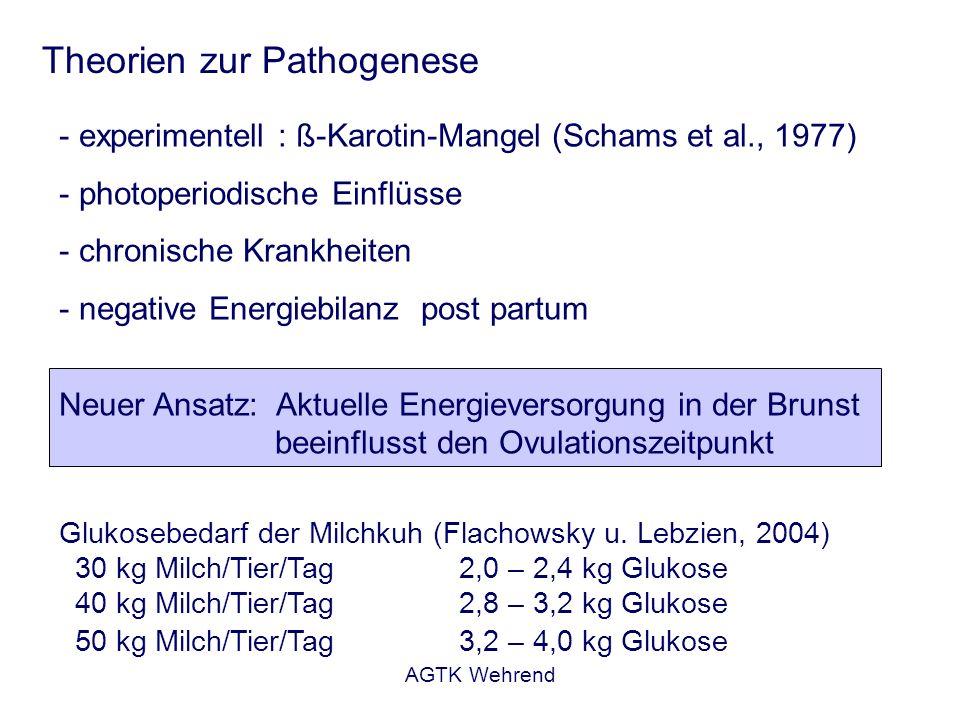 AGTK Wehrend Theorien zur Pathogenese Glukosebedarf der Milchkuh (Flachowsky u. Lebzien, 2004) 30 kg Milch/Tier/Tag 2,0 – 2,4 kg Glukose 40 kg Milch/T