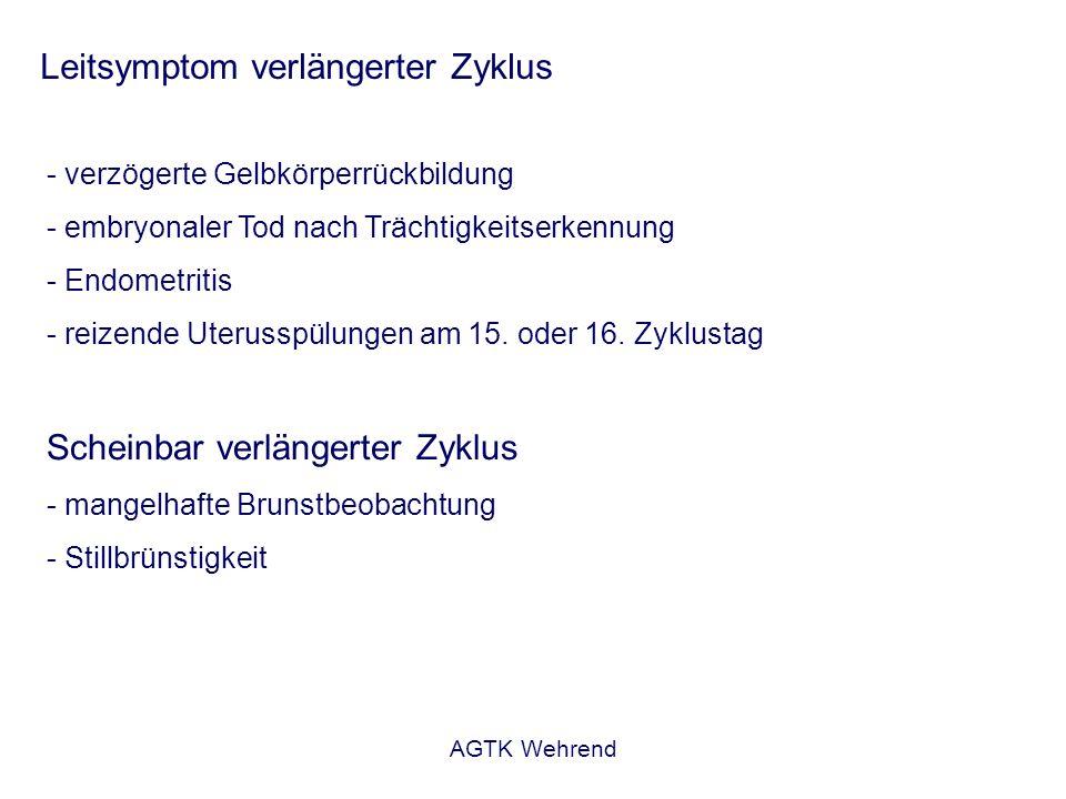 AGTK Wehrend Leitsymptom verlängerter Zyklus - verzögerte Gelbkörperrückbildung - embryonaler Tod nach Trächtigkeitserkennung - Endometritis - reizend