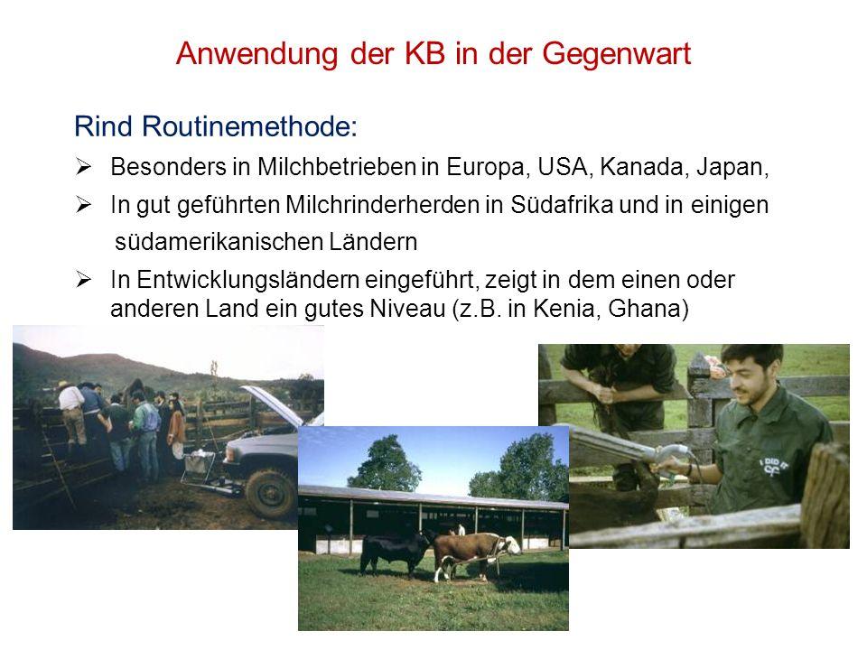Anwendung der KB in der Gegenwart Rind Routinemethode: Besonders in Milchbetrieben in Europa, USA, Kanada, Japan, In gut geführten Milchrinderherden i