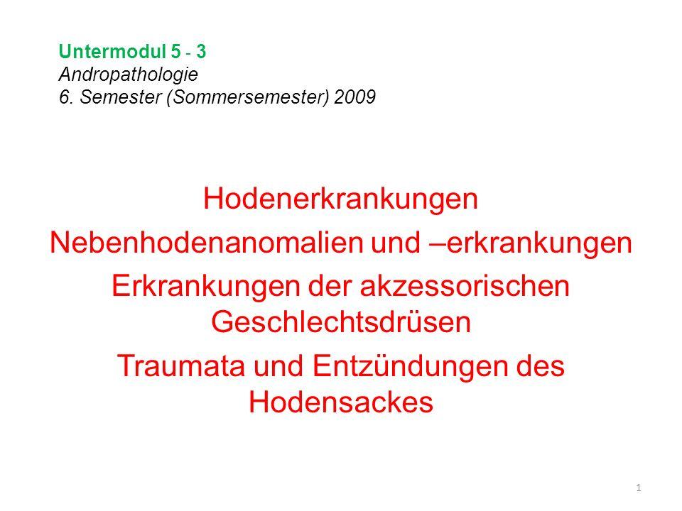 Untermodul 5 - 3 Andropathologie 6. Semester (Sommersemester) 2009 Hodenerkrankungen Nebenhodenanomalien und –erkrankungen Erkrankungen der akzessoris