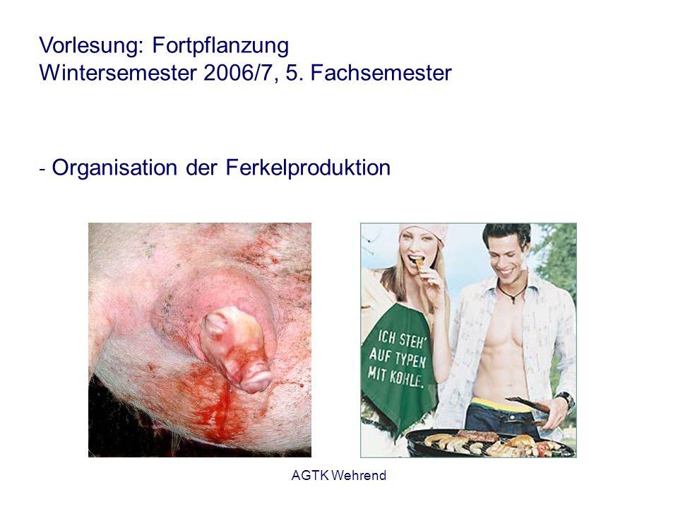 AGTK Wehrend Vorlesung: Fortpflanzung Wintersemester 2006/7, 5. Fachsemester - Organisation der Ferkelproduktion