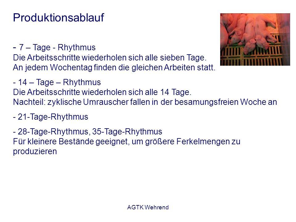 AGTK Wehrend Produktionsablauf - 7 – Tage - Rhythmus Die Arbeitsschritte wiederholen sich alle sieben Tage. An jedem Wochentag finden die gleichen Arb