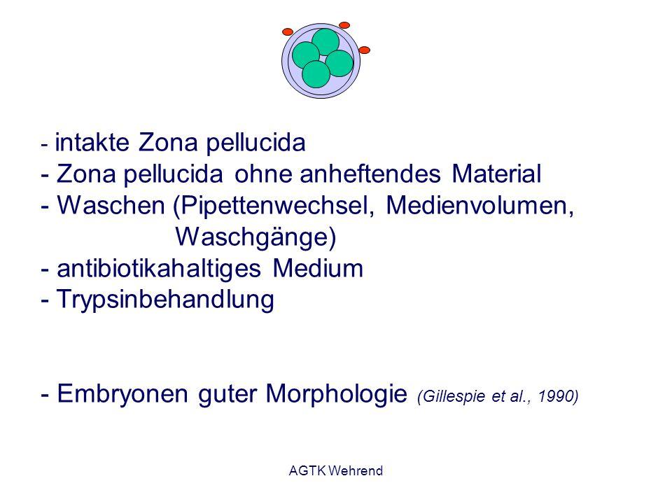 AGTK Wehrend - intakte Zona pellucida - Zona pellucida ohne anheftendes Material - Waschen (Pipettenwechsel, Medienvolumen, Waschgänge) - antibiotikah