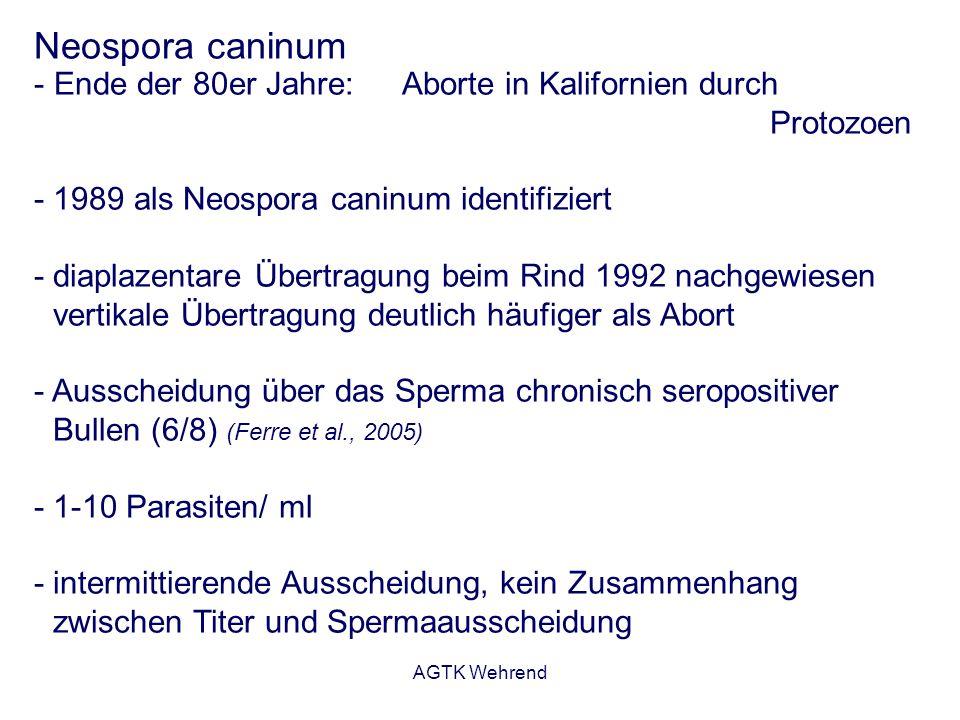 AGTK Wehrend Neospora caninum - Ende der 80er Jahre: Aborte in Kalifornien durch Protozoen - 1989 als Neospora caninum identifiziert - diaplazentare Ü