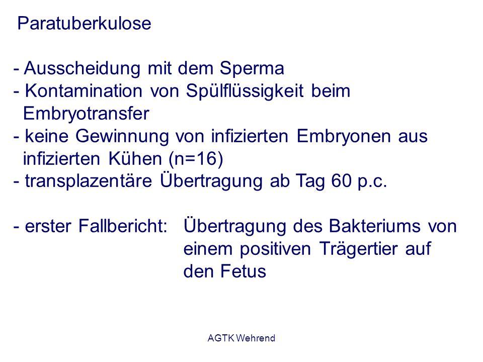 AGTK Wehrend Paratuberkulose - Ausscheidung mit dem Sperma - Kontamination von Spülflüssigkeit beim Embryotransfer - keine Gewinnung von infizierten E