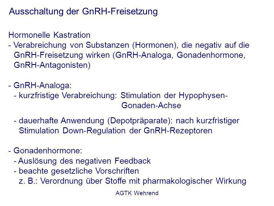AGTK Wehrend Ausschaltung der GnRH-Freisetzung Hormonelle Kastration - Verabreichung von Substanzen (Hormonen), die negativ auf die GnRH-Freisetzung wirken (GnRH-Analoga, Gonadenhormone, GnRH-Antagonisten) - GnRH-Analoga: - kurzfristige Verabreichung: Stimulation der Hypophysen- Gonaden-Achse - dauerhafte Anwendung (Depotpräparate): nach kurzfristiger Stimulation Down-Regulation der GnRH-Rezeptoren - Gonadenhormone: - Auslösung des negativen Feedback - beachte gesetzliche Vorschriften z.