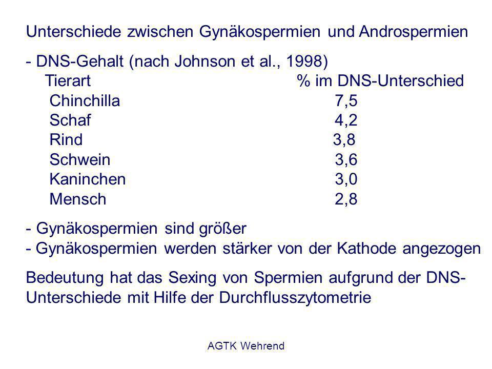 AGTK Wehrend Unterschiede zwischen Gynäkospermien und Androspermien - DNS-Gehalt (nach Johnson et al., 1998) Tierart% im DNS-Unterschied Chinchilla7,5 Schaf4,2 Rind 3,8 Schwein3,6 Kaninchen3,0 Mensch2,8 - Gynäkospermien sind größer - Gynäkospermien werden stärker von der Kathode angezogen Bedeutung hat das Sexing von Spermien aufgrund der DNS- Unterschiede mit Hilfe der Durchflusszytometrie