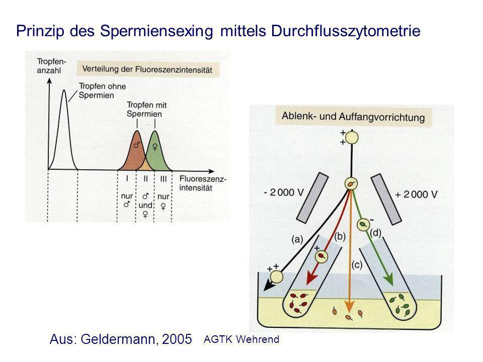 AGTK Wehrend Prinzip des Spermiensexing mittels Durchflusszytometrie Aus: Geldermann, 2005