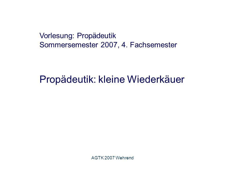 AGTK 2007 Wehrend Vorlesung: Propädeutik Sommersemester 2007, 4.