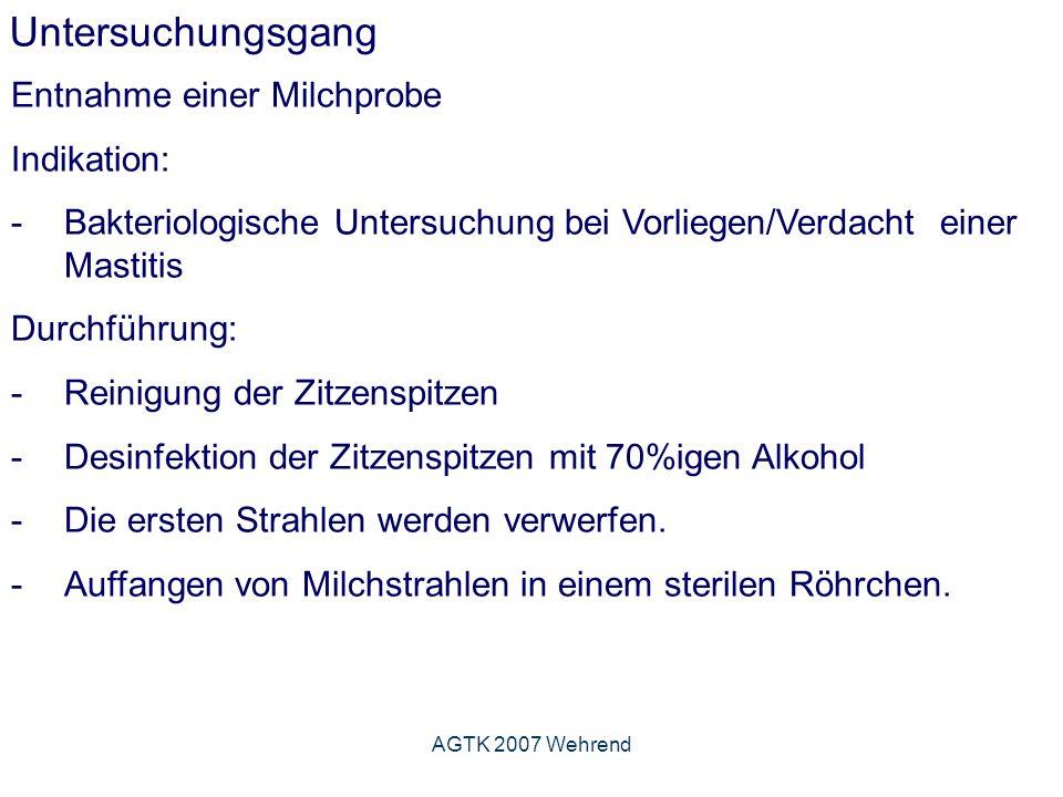 AGTK 2007 Wehrend Untersuchungsgang Entnahme einer Milchprobe Indikation: -Bakteriologische Untersuchung bei Vorliegen/Verdacht einer Mastitis Durchführung: -Reinigung der Zitzenspitzen -Desinfektion der Zitzenspitzen mit 70%igen Alkohol -Die ersten Strahlen werden verwerfen.