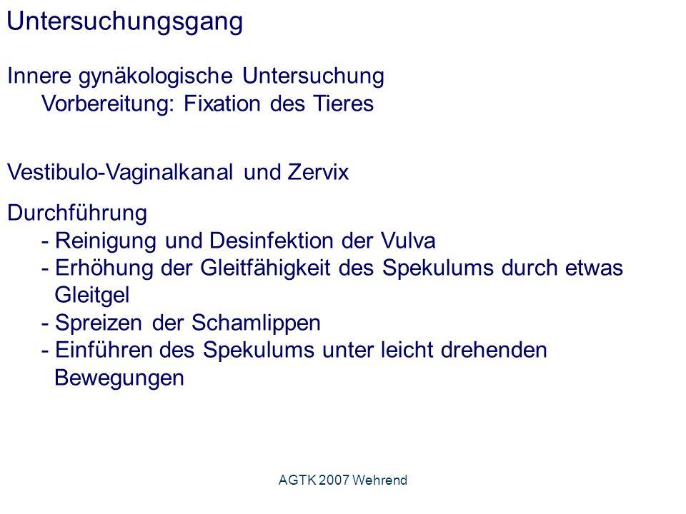 AGTK 2007 Wehrend Untersuchungsgang Innere gynäkologische Untersuchung Vorbereitung: Fixation des Tieres Vestibulo-Vaginalkanal und Zervix Durchführung - Reinigung und Desinfektion der Vulva - Erhöhung der Gleitfähigkeit des Spekulums durch etwas Gleitgel - Spreizen der Schamlippen - Einführen des Spekulums unter leicht drehenden Bewegungen