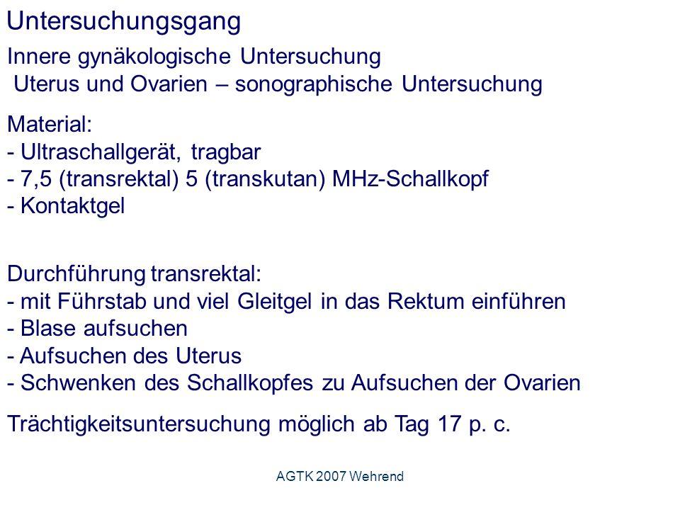 AGTK 2007 Wehrend Untersuchungsgang Innere gynäkologische Untersuchung Uterus und Ovarien – sonographische Untersuchung Material: - Ultraschallgerät, tragbar - 7,5 (transrektal) 5 (transkutan) MHz-Schallkopf - Kontaktgel Durchführung transrektal: - mit Führstab und viel Gleitgel in das Rektum einführen - Blase aufsuchen - Aufsuchen des Uterus - Schwenken des Schallkopfes zu Aufsuchen der Ovarien Trächtigkeitsuntersuchung möglich ab Tag 17 p.