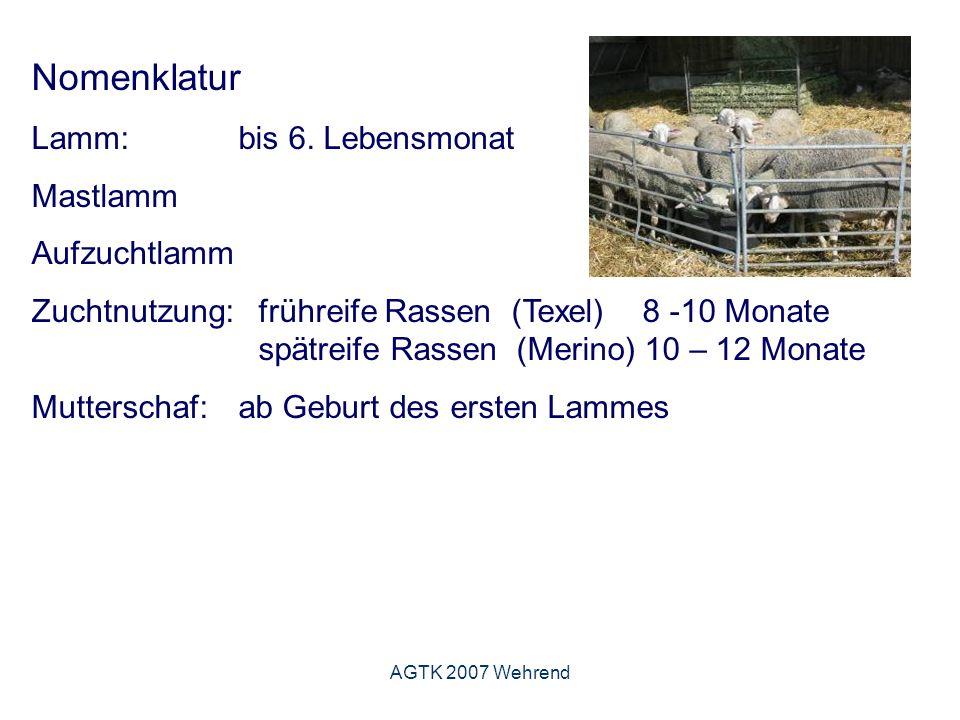 AGTK 2007 Wehrend Nomenklatur Lamm: bis 6.