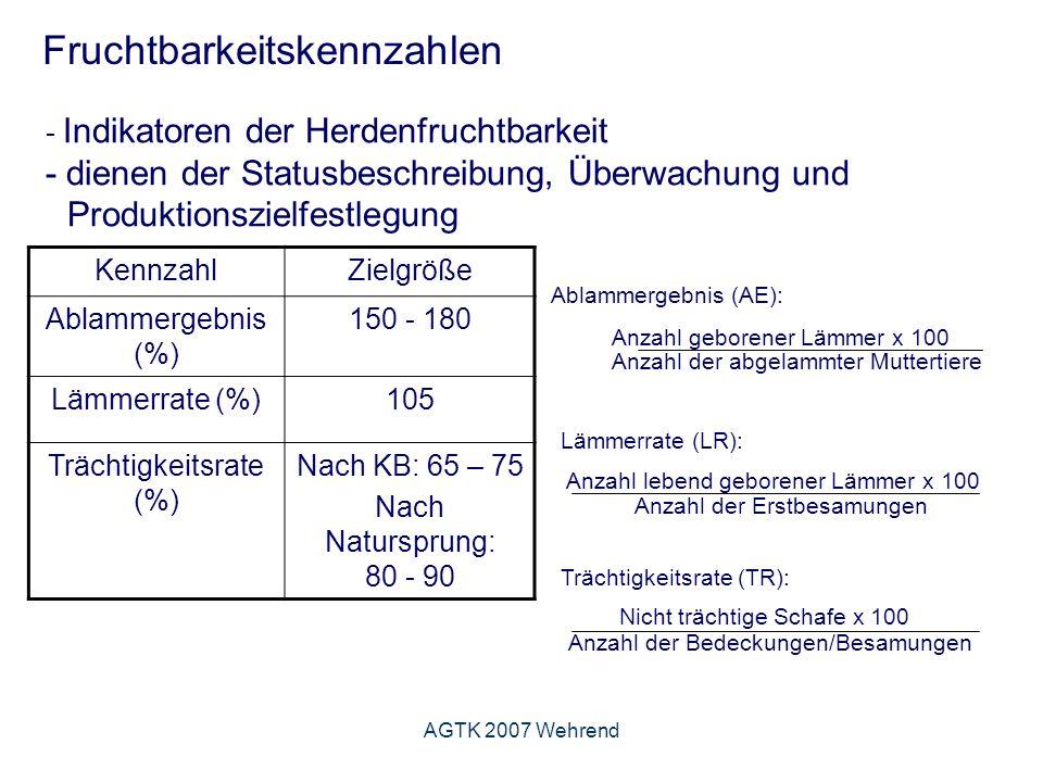 AGTK 2007 Wehrend Fruchtbarkeitskennzahlen - Indikatoren der Herdenfruchtbarkeit - dienen der Statusbeschreibung, Überwachung und Produktionszielfestlegung KennzahlZielgröße Ablammergebnis (%) 150 - 180 Lämmerrate (%)105 Trächtigkeitsrate (%) Nach KB: 65 – 75 Nach Natursprung: 80 - 90 Ablammergebnis (AE): Anzahl geborener Lämmer x 100 Anzahl der abgelammter Muttertiere Lämmerrate (LR): Anzahl lebend geborener Lämmer x 100 Anzahl der Erstbesamungen Trächtigkeitsrate (TR): Nicht trächtige Schafe x 100 Anzahl der Bedeckungen/Besamungen