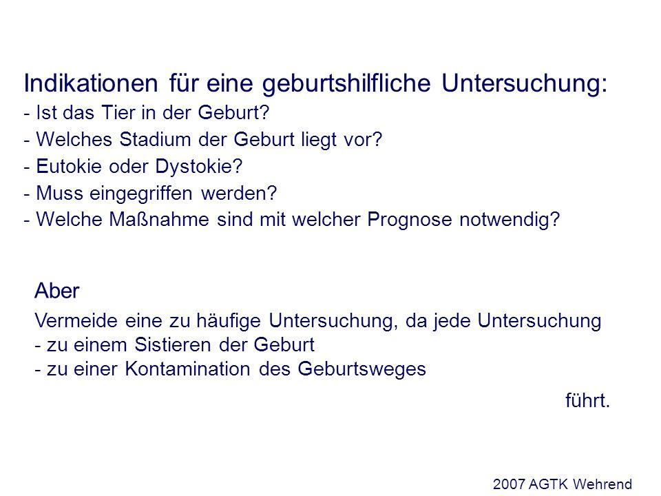 Die geburtshilfliche Untersuchung Lage (Situs) Verhältnis der Längsachse des Fetus zur Längsachse des Muttertieres Unterscheide: - Bauchquerlagen - Rückenquerlagen - Vertikallage - Horizontallage 2007 AGTK Wehrend