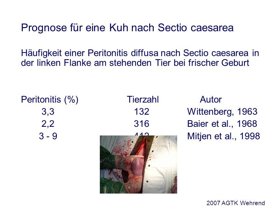 Prognose für eine Kuh nach Sectio caesarea Häufigkeit einer Peritonitis diffusa nach Sectio caesarea in der linken Flanke am stehenden Tier bei frisch
