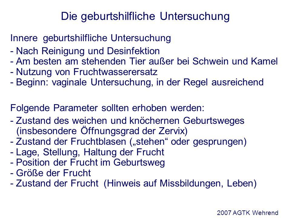 (Bostedt 2006) 2007 AGTK Wehrend