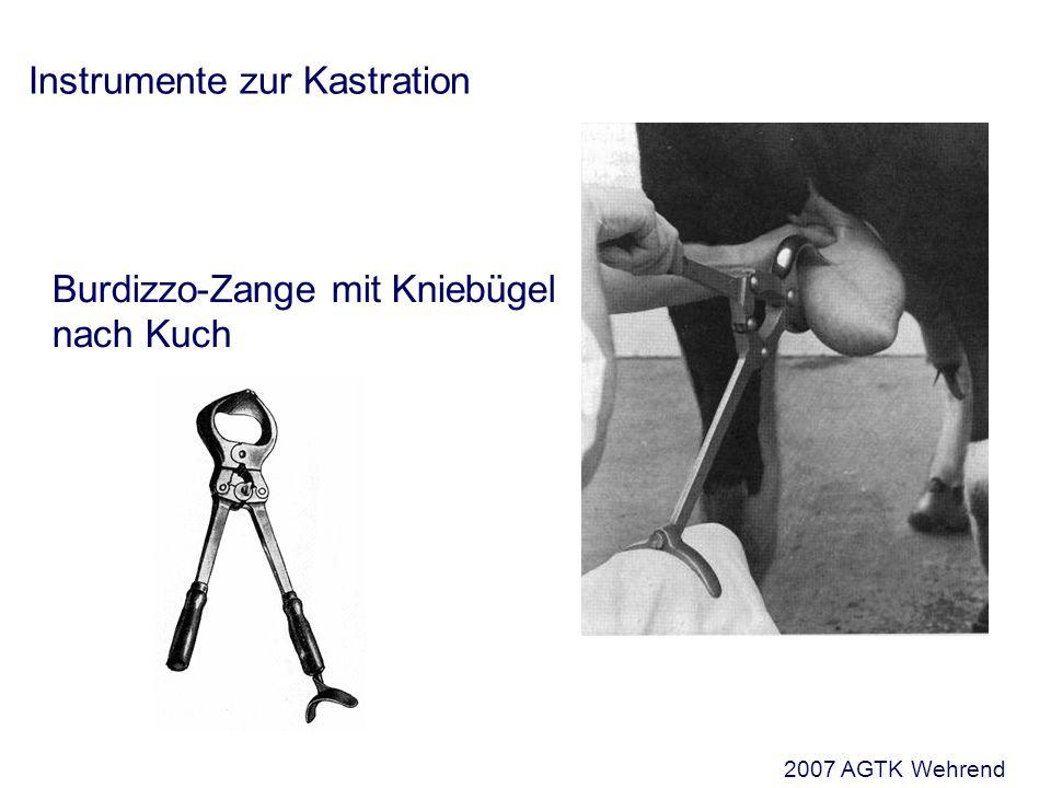 Instrumente zur Kastration Burdizzo-Zange mit Kniebügel nach Kuch 2007 AGTK Wehrend