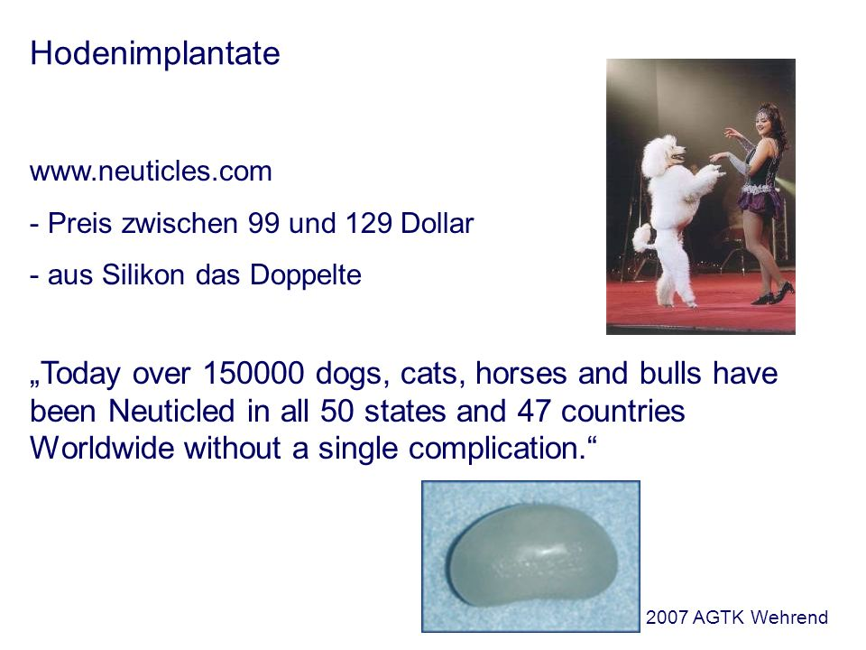 Hodenimplantate www.neuticles.com - Preis zwischen 99 und 129 Dollar - aus Silikon das Doppelte Today over 150000 dogs, cats, horses and bulls have been Neuticled in all 50 states and 47 countries Worldwide without a single complication.