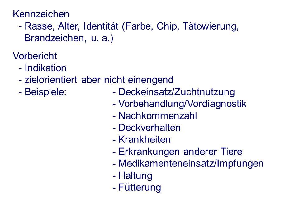 Kennzeichen - Rasse, Alter, Identität (Farbe, Chip, Tätowierung, Brandzeichen, u.