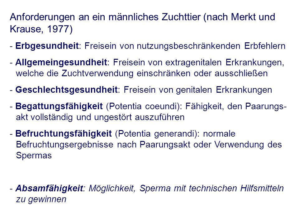 Spezielle andrologische Untersuchung - äußere morphologische Untersuchung - Präputium - Penis z.