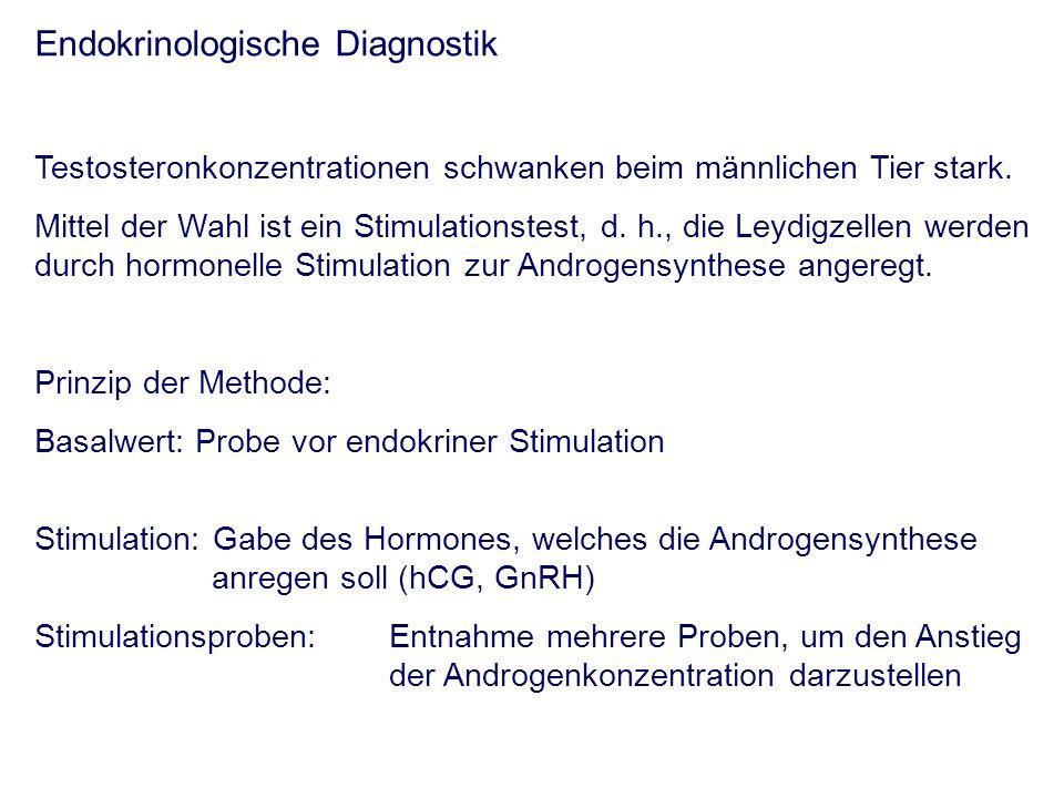 Endokrinologische Diagnostik Testosteronkonzentrationen schwanken beim männlichen Tier stark.