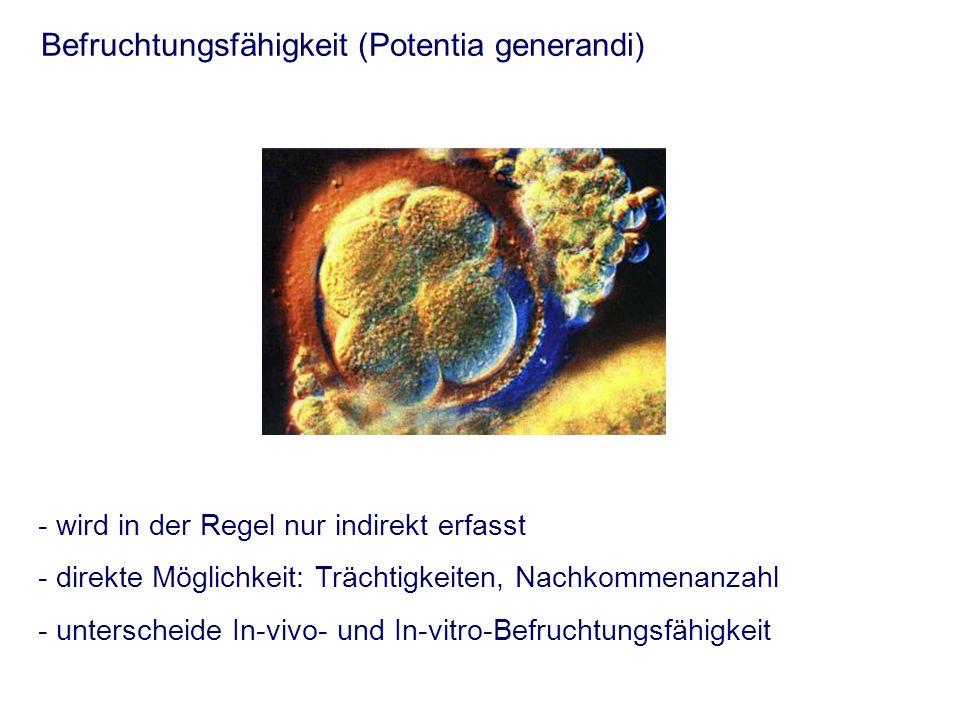 Formaler Ablauf der Andrologischen Untersuchung - Kennzeichen - Vorbericht - Allgemeine Untersuchung - Spezielle andrologische Untersuchung - äußere morphologische Untersuchung - innere morphologische Untersuchung - funktionelle Untersuchung - Entnahme von Proben für weitere Untersuchungen - Spermatologische Untersuchung - Mikrobielle Untersuchung - endokrine Untersuchung - Diagnose - Beurteilung