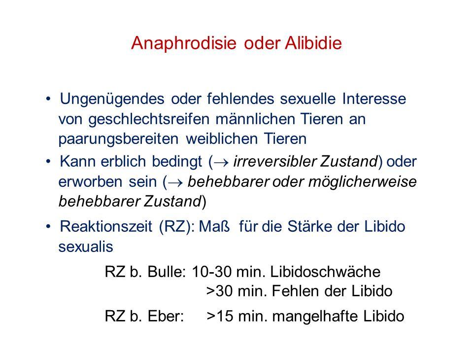 Anaphrodisie oder Alibidie Ungenügendes oder fehlendes sexuelle Interesse von geschlechtsreifen männlichen Tieren an paarungsbereiten weiblichen Tiere