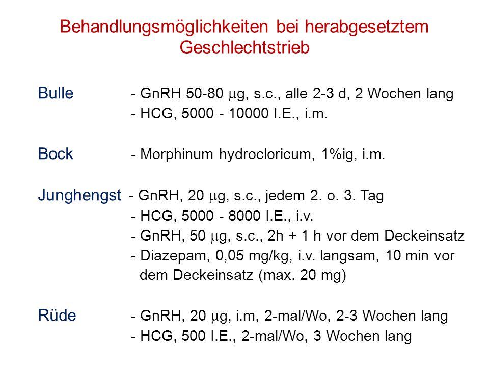 Behandlungsmöglichkeiten bei herabgesetztem Geschlechtstrieb Bulle - GnRH 50-80 g, s.c., alle 2-3 d, 2 Wochen lang - HCG, 5000 - 10000 I.E., i.m. Bock