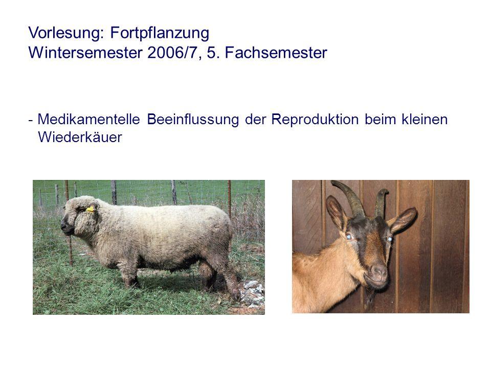 Vorlesung: Fortpflanzung Wintersemester 2006/7, 5. Fachsemester - Medikamentelle Beeinflussung der Reproduktion beim kleinen Wiederkäuer