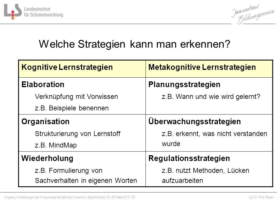 Umgang mit Heterogenität im naturwissenschaftlichen Unterricht - Bad Wildbad - 03.-05.März 2010 - 25LS 33 - Prof. Bayer Platzhalter Welche Strategien