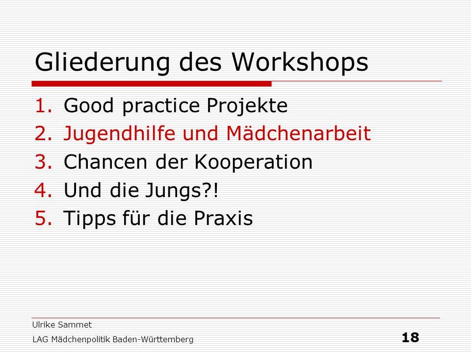 Ulrike Sammet LAG Mädchenpolitik Baden-Württemberg 18 Gliederung des Workshops 1.Good practice Projekte 2.Jugendhilfe und Mädchenarbeit 3.Chancen der