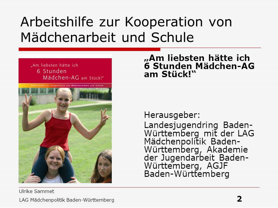 Ulrike Sammet LAG Mädchenpolitik Baden-Württemberg 3 Gliederung des Workshops 1.Good practice Projekte 2.Jugendhilfe und Mädchenarbeit 3.Chancen der Kooperation 4.Und die Jungs?.