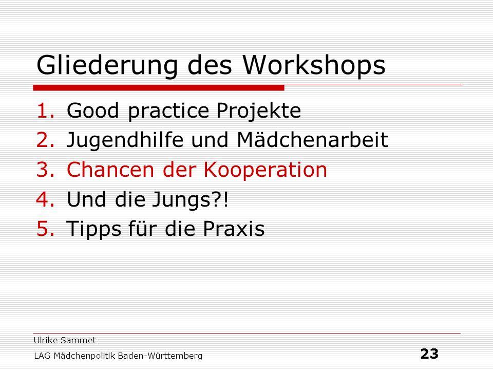 Ulrike Sammet LAG Mädchenpolitik Baden-Württemberg 23 Gliederung des Workshops 1.Good practice Projekte 2.Jugendhilfe und Mädchenarbeit 3.Chancen der