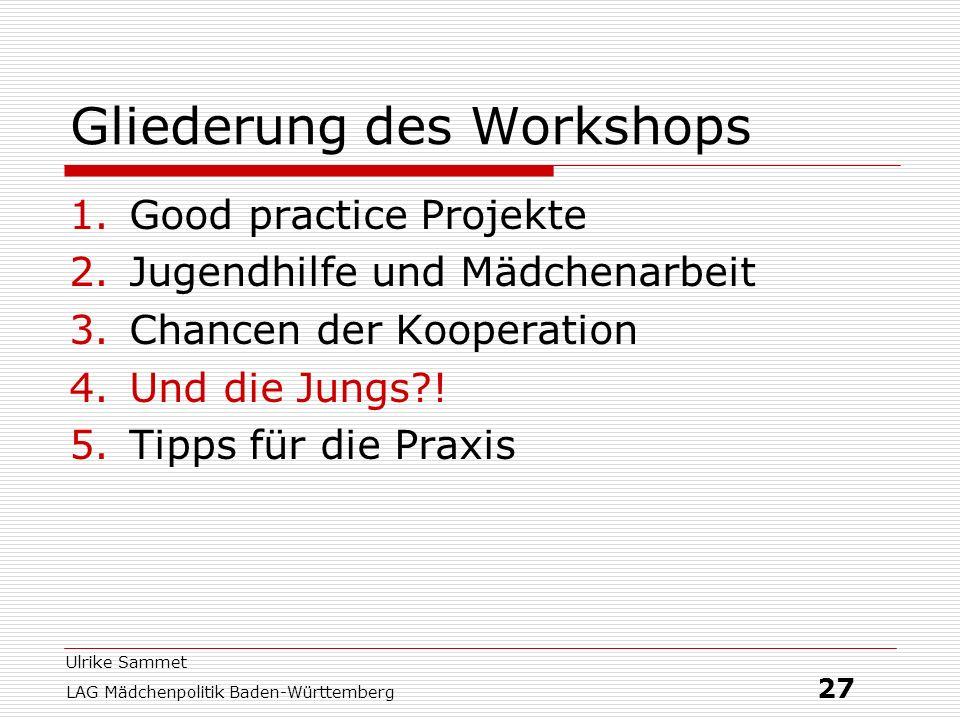 Ulrike Sammet LAG Mädchenpolitik Baden-Württemberg 27 Gliederung des Workshops 1.Good practice Projekte 2.Jugendhilfe und Mädchenarbeit 3.Chancen der