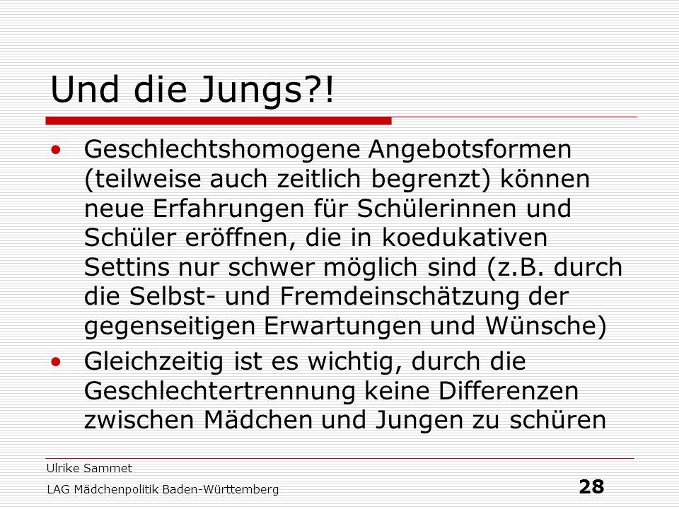 Ulrike Sammet LAG Mädchenpolitik Baden-Württemberg 28 Und die Jungs?! Geschlechtshomogene Angebotsformen (teilweise auch zeitlich begrenzt) können neu